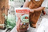LITTLE FARMER PRODUCTS Chicken Fun-DOO