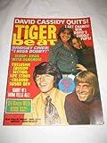 Tiger Beat V.6 #5 Jan. 1971 David Cassidy Jack Wild Danny Bonaduce Dark Shadows