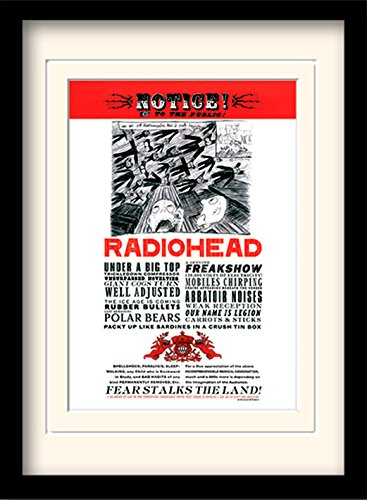 Radiohead In Rainbows Framed 30 x 40 Official Print