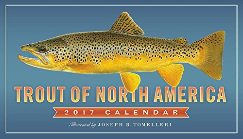 Trout Of North America - 2017 Calendar 12 x 12in