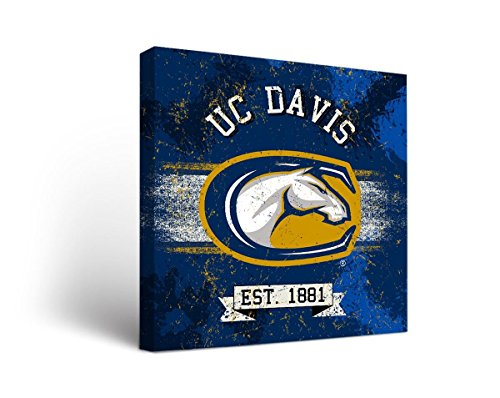 (Victory Tailgate California University of Davis Aggies Canvas Wall Art Banner Version (18x24))