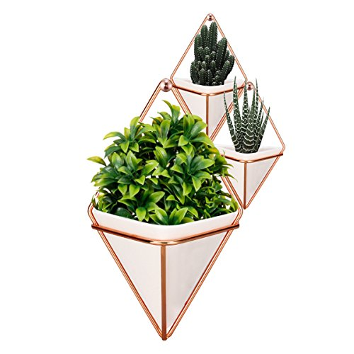 LANMU Hanging Container,Handcrafted Wall Vases,Geometric Wall Decor,Wall Vase Hanging,Plant Holder for Air Plants/Succulent Plants/Artificial Flowers/Mini Cactus/Geometric Plants (1 Large and 2 Small)
