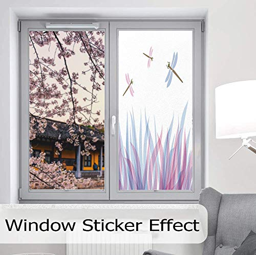 Fly Fishing Stained Glass Window - YOLIYANA Frosted Window Film Stained Glass Window Film,Dragonfly,Work Well in The Bathroom,Nature Themed Colorful Birds Like Bugs Flies on,24''x48''