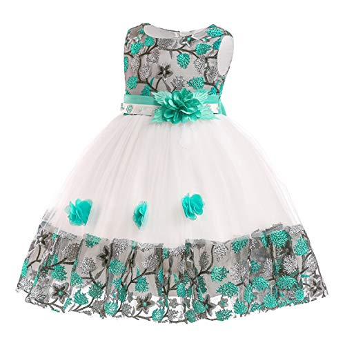 - 3-10T Flower Girl Dress Toddler Pageant Party Tulle Easter Embroidery Floral Dresses 3T 4 Years (Green,110)