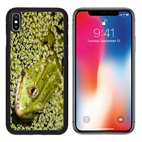 Iris Frogs (MSD Premium Apple iPhone X Aluminum Backplate Bumper Snap Case IMAGE ID: 583722 Close up of a frog on a lake)