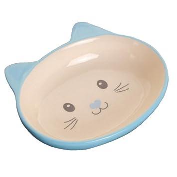 Porcelana Cara de gato Mascotas Cuencos Perros Gatos Cuencos Suministros para mascotas Accesorios para gatos-Azul: Amazon.es: Hogar