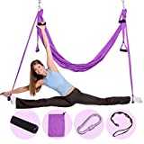 Nillygym Yoga Swing - Antigravity Yoga Swing - Aerial Yoga Hammock - Working Out Trapeze for Yoga - Flexibility and Freedom Trainings - Sling for Antigravity Yoga - With Extension Straps Included