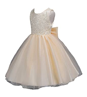 c1c49ea3a Horcute Tulle Lace Party Wedding Bridesmaid Backless Flower Girl Dress  Champagne3T
