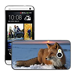 Hot Style Cell Phone PC Hard Case Cover // M00047321 animals fox ice wild animal // HTC ONE M7