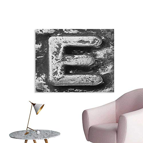 Anzhutwelve Letter E Photographic Wallpaper Aluminum Colored Decayed Uppercase E Alphabet Character Nostalgic Medieval Initials Cool Poster Grey W28 xL20 -