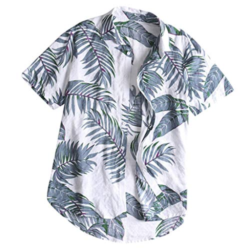 Realdo Mens Hawaii Shirt,Men's Casual Button Down Tropical Print Tops T-Shirt Grey ()