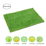 EcoMatrix Artificial Grass Mat Fake Grass Rug Entrance Carpet Doormat for Indoor Outdoor Realistic Landscape Lawn Synthetic Grass Turf for Dog (18inch x 24inch)