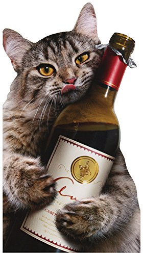 (Cat Wine Bottle - Avanti Oversized Funny Birthday Card)