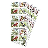 Songbirds in Snow Forever First Class USPS Postage Stamps brighten cold winter days (5 sheets of 20 Stamps)