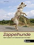 Zappelhunde: Vom Leben mit überaktiven Hunden