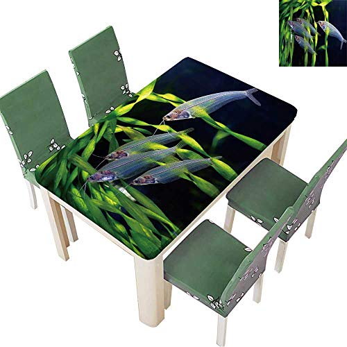 Printsonne Polyester Tablecloth Table Cover Flock of Glass Catfish for Dining Room 50 x 72 Inch (Elastic Edge)