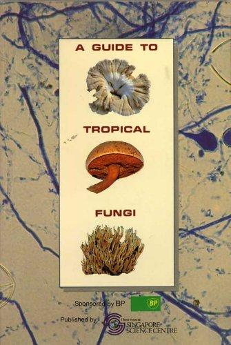 A Guide to Tropical Fungi Tan Teck Koon