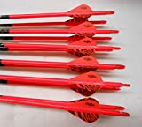 Carbon Express Maxima Red 250 Carbom Arrows w/Blazer Vanes Pathfinder Wraps 1 Dz.