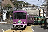 MODEMO(モデモ) MODEMO(モデモ) 江ノ島電鉄 1000形 「1002号編成」 '京紫塗装' (M車)