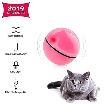 Amazon.com: Juguete interactivo para gatos con forma de ...
