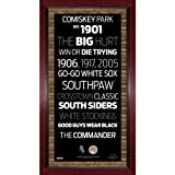 MLB Chicago White Sox Subway Sign Wall Art with Authentic Dirt from U.S. Cellular Field, 16x32-Inch