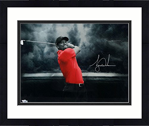 Tiger Woods Sports Memorabilia - Framed Tiger Woods Autographed 16