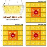 Bloom Plus Grow Light BP1000 2x2ft Coverage Full