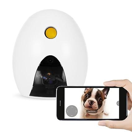 Dog Treat Dispenser >> Amazon Com Funpaw Q Cat Dog Treat Dispenser W Toy Laser Monitor