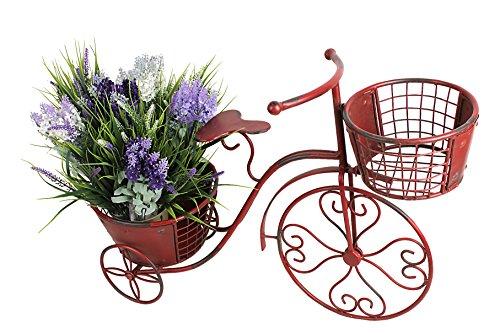 Bicycle Garden (Attraction Design HG1101 Metal Nostalgia Yard Bike Planter)