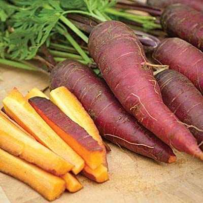 Cosmic Purple Carrot Seeds, 500+ Premium Heirloom Seeds!, Delicious! Rare! Low Availability, High Demand!, (Isla's Garden Seeds), 85% Germination Rates, Non GMO, Highest Quality Seeds : Garden & Outdoor