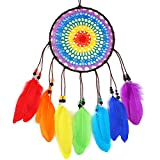 Buvelife Dream Catcher Bohemia Handmade Traditional Dream Catcher with Colourful Rainbow Feather Wall Hanging Home Decoration