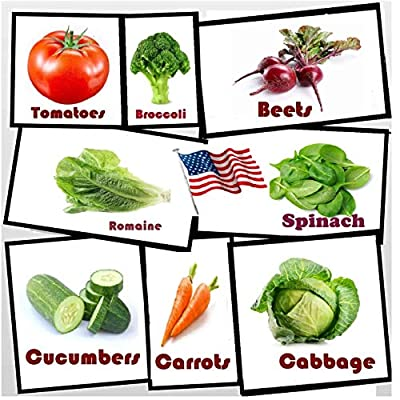 Vegetable Seeds, Variety Pack, Survival Seeds, Made in The USA-Heirloom Seeds, Tomato Seeds Beet Seeds, Broccoli Seeds, Lettuce Seeds, Spinach Seeds, Cabbage Seeds, Carrot Seeds Cucumber Seeds, : Garden & Outdoor