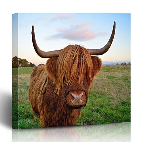 Ahawoso Canvas Print Wall Art 12x12 Inch Brown Scottish Highland Cattle Red Watercolor Agriculture Beef Breed Cow Design Allover Modern Artwork Printing Home Decor Wrapp Gallery -
