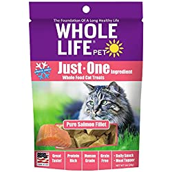 Whole Life Pet Just One-Single Ingredient Freeze Dried Treats For Cats Pure Salmon Fillet, 1Oz