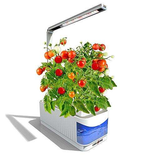 Garden Light System - 6