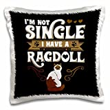 3dRose I'M Not Single I Have a Rag Doll Cat on Black Background Trendy Work Pillow Case, 16 x 16""