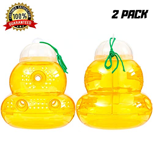 Wasp Trap 2 PACK Bee Traps Jar Hornet Trap Yellow Jacket Trap Attracts Hornets Yellow Jackets Bees Wasps Yellow Jackets Traps Plastic Wasp Trap Catcher Beehive Wasp Trap with Sugar ()