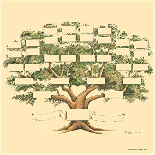 The Raymon Troup Studio Family Tree Chart, 5-6 Generations, Scrapbook Size, 12x12 Inches (Antique Gold)