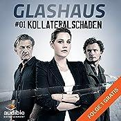 Kollateralschaden (Glashaus 1) | Christian Gailus
