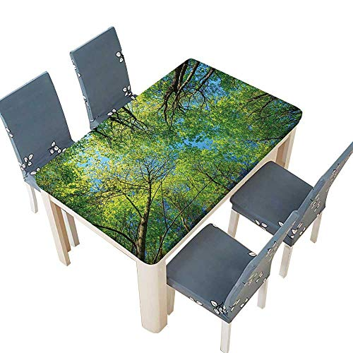 PINAFORE Waterproof SpillProof Tablecloth Branches Tranquil Lime Conservation Area Mangrove Willow Paradise Green for Picnic,Outdoor or Indoor Party use W41 x L80.5 INCH (Elastic Edge)