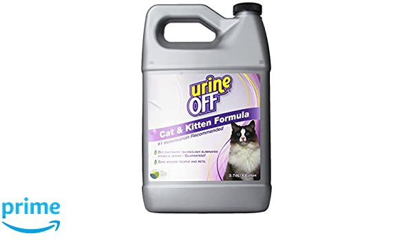 Orina Off Olor y quitamanchas para Gatos, 1 Gallon: Amazon.es: Productos para mascotas