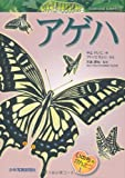(Observation of life) Ageha (2012) ISBN: 4879814040 [Japanese Import]