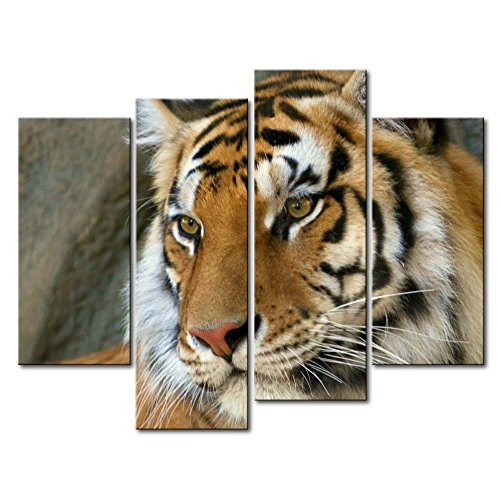 So Crazy Art - Canvas Print Wall Art Painting For Home Decor,Bengal Tiger 4 Pieces Panel Paintings Modern Giclee Stretched And Framed Artwork Oil The Picture For Living Room Decoration,Animal Pictures Photo Prints On Canvas (Bengal Tiger Framed)