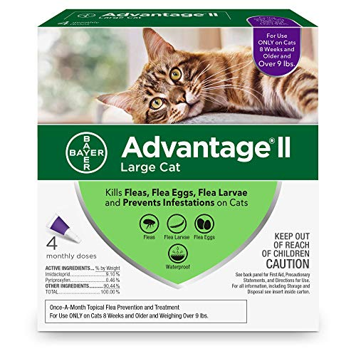 Buy flea and tick prevention for cats