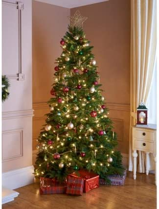 Albero Di Natale In Inglese.Stunning 2 1 M Inglese Pino Albero Di Natale Decorazione Natalizia Amazon It Casa E Cucina