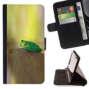 Momo Phone Case / Flip Funda de Cuero Case Cover - kamen lyagushka Zelenaya fon - Apple Iphone 6 PLUS 5.5