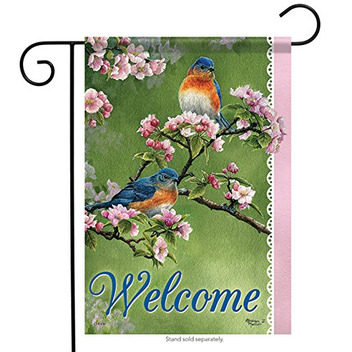 Carson Home Accents Flagtrends Classic Garden Flag, Welcome Springtime
