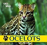 Ocelots, Henry Randall, 1448825199