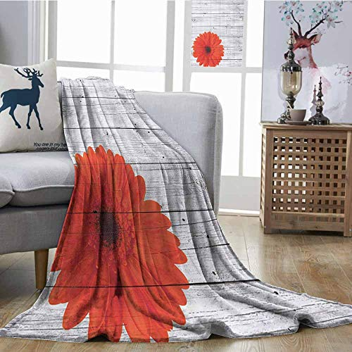Zmcongz Throw Blanket Vintage Home Decor Hot Red Daisy Flowers on Rustic Wood Wall Design Picture Garden Gerbera Plant Warm All Season Blanket for W51 xL60 Collection ()