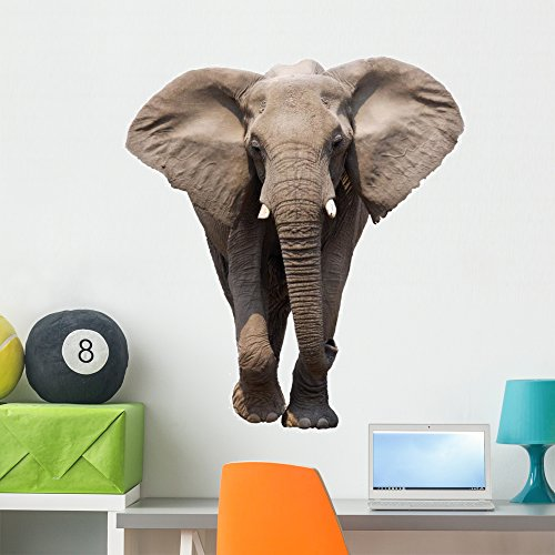 Wallmonkeys African Elephant Wall Decal Peel and Stick Animal Graphics (36 in H x 24 in W) WM79793
